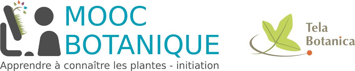 Logo du Mooc batanique (tela-botanica)